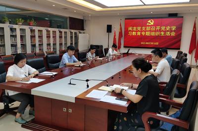 闽龙党支部召开党史学习教育专题组织生活会
